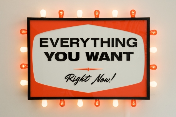 Steve Lambert Everything You Want Right Now